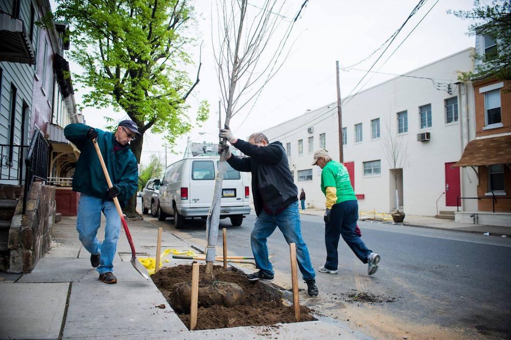900_Chew_Tree_Planting48